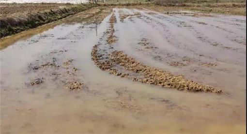 渝水区土地类型-农交网